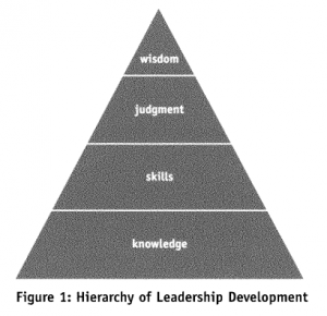 Figure 1: Hierarchy of leadership development
