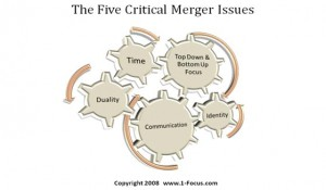 The five critical merger issues