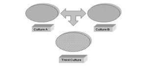Image of culture one and culture two leading to culture three