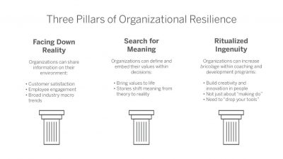 Three Pillars of Organizational Resilience
